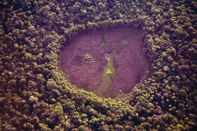 Desmatamento da Amazônia avança depois de anos em queda